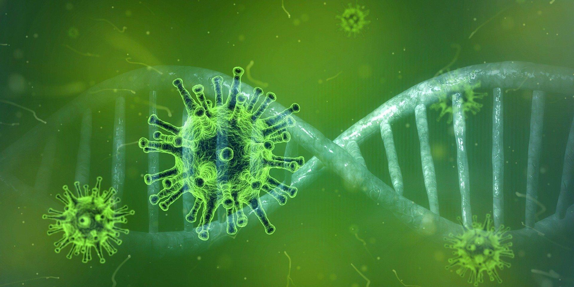 coronavirus 4833754 19201 Blog